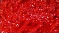 Trinidad Scorpion Puree 8 Pounds - 1 Gallon Pail
